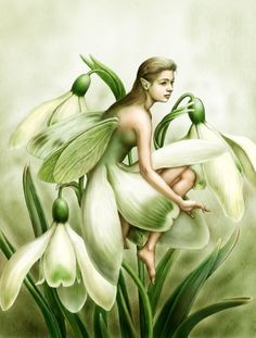 ≍ Nature's Fairy Nymphs ≍ magical elves, sprites, pixies and winged woodland faeries - Snowdrop Fairy
