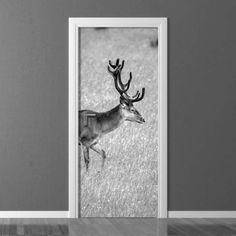 Fototapeta na drzwi Wally Moose Art, Photograph, Doors, Interior Design, Decoration, Wallpaper, Animals, Inspiration, Home Decor