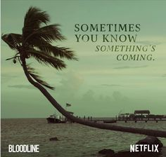 Netflix streaming-season two. Excellent story of a wealthy Florida family in turmoil. The suspense grows until the unexpected climax at the end. Senses Fail, Netflix Original Series, Tv Series, Black Sheep Of The Family, Film Theory, Netflix Streaming, Tv Times, Shows On Netflix, Book Tv