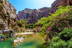 Preveli Palm Forest, Crete, Greece.