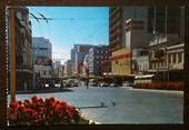 Modern Coloured Postcard by Gladys Goodall of Queen Street Auckland. - 444144 - Postcard - Postcards Auckland - Postcards New Zealand - Postcards By Country - EASTAMPS Auckland New Zealand, Postcards, Street View, Queen, Country, Modern, Color, Trendy Tree, Rural Area