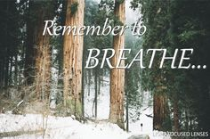 4 Steps to Live Stress Free. Figure outwhyyou're stressed. Rethinkthe situation. Take deepbreathsand remind yourself. Focuson what matters.