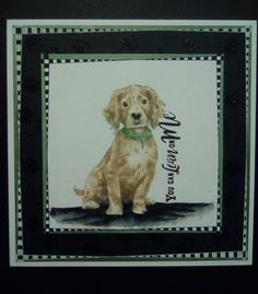 Created by Debi Durrant using Sheena Douglass A Little Bit Sketchy - Lean On Me. Sheena Douglass, Spectrum Noir, Crafters Companion, Animal Cards, Embossing Folder, Cat Lovers, Card Ideas, Stencils, Dog Cat