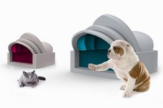 antonio lanzillo and partners architectural pet houses sidney opera house bilbao museum