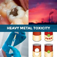 Sources of Heavy Metal Toxicity & What You Can Do! Low Thyroid, Thyroid Gland, Hair Loss Essential Oils, Candida Overgrowth, Underactive Thyroid, Easy Diet Plan, Hair Loss Women, Thyroid Problems, Body Organs