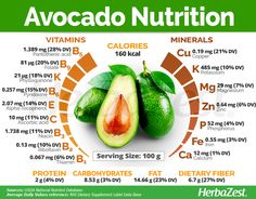 Avocado is a popular herb, but it's also packed with medicinal benefits. Learn more about avocado, from avocado recipes to growing it and much more. Tomato Nutrition, Nutrition Tips, Health And Nutrition, Nutrition Activities, Avocado Nutrition Facts, Carrots Nutrition, Nutrition Tracker, Nutrition Drinks, Health Products