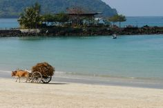 Ngapali Beach - The most beatiful beach in Myanmar