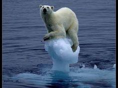 ¿Que es el Calentamiento Global? Consejos para evitarlo