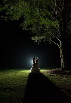 Would love to get some outdoor pics at night, if the lighting is right.