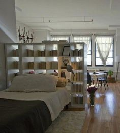 loft living, with an expedit room divider