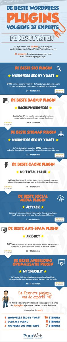 beste WordPress plugins infographic