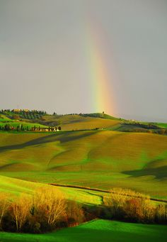 "djferreira224: ""Landscape - Tuscany by enzo.tiberi on Flickr. """