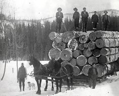 Five men standing on a load of logs being drawn through the snow by two horses., 1929