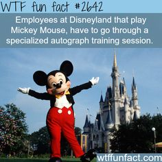 Employees at Disneyland - WTF fun facts