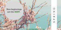 Happy Spring, Pinterest BEST friends!