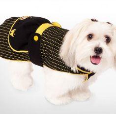 roupa-cachorro_533_14-03-12