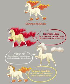 Pokemon Breeds, Subspecies & Variants