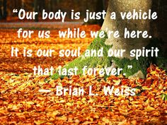Collection of best Brian Weiss quotes ever. Inspirational Quotes from his Best Seller Book on Past Life regression Many Lives Many Masters. Dr Brian Weiss, Only Love Is Real, Leaving A Relationship, Past Life Regression, Who Book, Life After Death, Spiritual Messages, Soul Quotes, Good Doctor