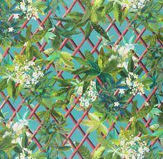 Nouveaux Mondes Fabrics | Canopy - Turquouise by Designers Guild | Architonic