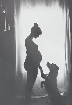 My 9 year old American Bulldog/Pitbull mix and my pregnant wife // silhouette black and white photography // pregnancy announce mm ideas Maternity Pictures, Baby Pictures, Baby Bump Photos, Fall Maternity Photos, Maternity Shoots, Studio Maternity Photos, Belly Photos, Birth Photos, Newborn Photos