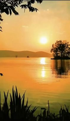 Beautiful Scenery Pictures, Beautiful Nature Scenes, Beautiful Gif, Beautiful Sunrise, Nature Pictures, Amazing Nature, Beautiful Landscape Wallpaper, Beautiful Landscapes, Sunset Wallpaper