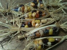 Jellybeans in cornhusks make sweet party favors--What a great idea for a thanksgiving party for your kids classroom!