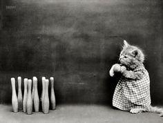 1914 Kitten bowling