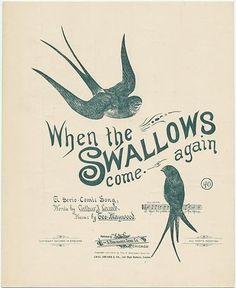 : birds, design, sheet music, swallows, text, vintage - inspiring picture on favim.com