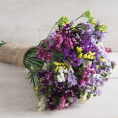 Statice (also known as Sea Lavender) is good for fresh or dried bouquets.
