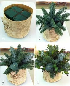 Philippa-Craddock-Step-by-Step-Christmas-Arrangement-Flowerona