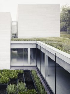 Roof Gardens on White Boxes // Glenstone Museum - Thomas Phifer Green Architecture, Contemporary Architecture, Architecture Details, Landscape Architecture, Building Architecture, Museum Architecture, Sustainable Architecture, Residential Architecture, Architecture Visualization