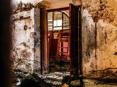 "©In situ No. 1, de la serie: ""Habitat"" 29 de Abril de 2013, Campeche, Camp; México"