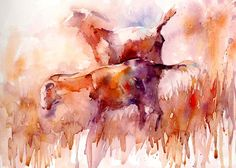 The Magic of Watercolour Painting Virtual Gallery - Jean Haines, Artist - Animals