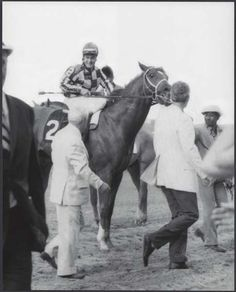 SECRETARIAT, Ron Turcotte, Lucien Laurin, Hollis Chenery and Eddie Sweat just after the finish of the 1973 Belmont Stakes! SECRETARIAT looks like he could go around again!