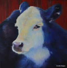 """Black Calf by the Red Barn is an 18""""x18"""" deep profile oil on canvas."""