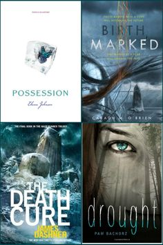 Young Adult Book Series