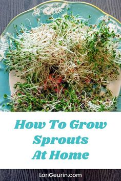 Learn how to grow sprouts from home in this quick and easy tutorial and video. Sprouts are fun and easy to grow and so nutritious to eat. You can grow broccoli, mung bean, alfalfa, and other types of sprouts using trays or Mason jars.    #howtogrowsprouts #sprouts #broccolisprouts #growsproutsindoors #growsproutsinatray #microgreens Alfalfa Seed, Alfalfa Sprouts, Sprouts Salad, Broccoli Sprouts, Diy Crafts And Hobbies, Growing Sprouts, Good Sources Of Calcium, Smashed Avocado