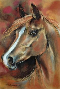 Horse art by Maja Wojnarowska Horse Drawings, Animal Drawings, Art Drawings, Painted Horses, Horse Pictures, Art Pictures, Images D'art, Watercolor Horse, Horse Artwork