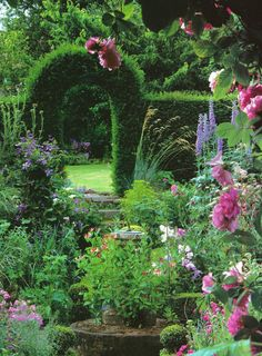 Rosa 'Ispahan',  Phlox paniculata, clematis, eryngium, lilies, pinks, scabious, aconitum, delphinium, campanula and roses. Yew arch leads to lawn. England, Chaddesley Corbett. Worcestershire.