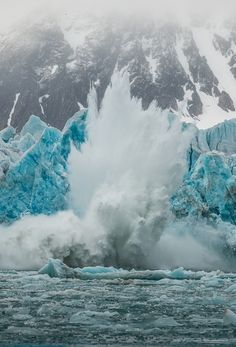 Un Iceberg gigante esta colapsandose dejando menos espacio para los osos polares