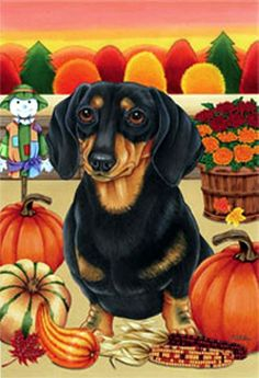 Elegant Black U0026 Tan Dachshund Autumn Garden Flag Designed By Artist Tomoyo Pitcher