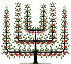espalier design - Google Search