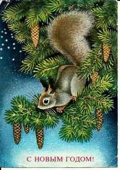Squirrel, Vintage  Russian Postcard, HappyNew Year, Christmas, print 1977 by LucyMarket on Etsy