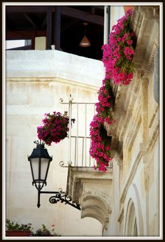 Lecce, Province of Lecce, Puglia region Italy Beautiful Buildings, Beautiful Places, Beautiful Pictures, Cradle Of Civilization, Italian Street, Under The Tuscan Sun, Places In Italy, Life Is A Journey, Window Boxes