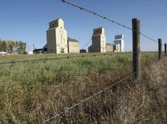 The area just southeast of Calgary has a remarkable number of grain elevators still standing and this makes it an natural attractant to us history explorers. Canadian History, Us History, Grain Storage, Rockabilly Cars, Old Barns, Old Buildings, Skyscrapers, Watercolor Landscape, Elevator