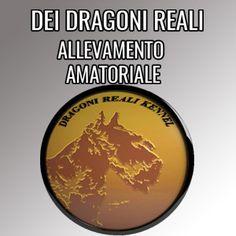 http://www.trovavetrine.it/deidragonireali