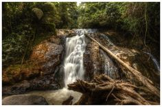 A waterfall while walking in the jungle in the Cameroon Highlands, Malaysia.