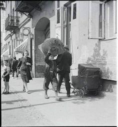 Życie na ulicach Warszawy na chwilę przed wybuchem wojny Poland, Universe, Memories, City, Winter, Photos, History, Warsaw, Ignition Coil