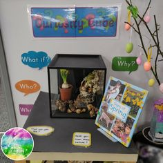 Early Years ideas from Tishylishy My Curiosity Cube Tuff Spot, Eyfs Classroom, Classroom Displays, Classroom Ideas, Classroom Projects, Inquiry Based Learning, Early Learning, Curiosity Approach Eyfs, Cubes