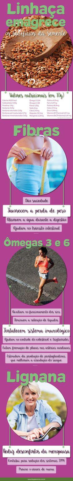 Linhaça emagrece: os benefícios da semente - Blog da Mimis #linhaça #blogdamimis #infográfico #emagrecer